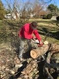Το άτομο με μια αλυσίδα είδε στην κοπή επάνω ένα πεσμένο κλαδί δέντρων για το καυσόξυλο στοκ εικόνες
