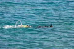 Το άτομο με τη μάσκα και κολυμπά με αναπνευτήρα κολυμπά στη θάλασσα Στοκ Εικόνες