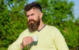 Το άτομο με τη μακριά γενειάδα απολαμβάνει τον καφέ Τελετουργική έννοια πρωινού Το γενειοφόρο άτομο με την άσπρη κούπα, πίνει τον Στοκ φωτογραφία με δικαίωμα ελεύθερης χρήσης