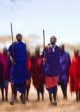 Το άτομο μιας φυλής Masai παρουσιάζει τελετουργικά άλματα Στοκ εικόνα με δικαίωμα ελεύθερης χρήσης