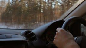 Το άτομο οδηγεί ένα αυτοκίνητο μέσω του δάσους κάτω από τον ήλιο Φλόγα φακών φιλμ μικρού μήκους