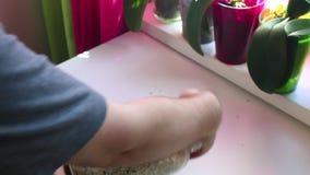 Το άτομο παίρνει ένα βάζο γυαλιού με τα συστατικά για το muesli και ανακατώνει απόθεμα βίντεο