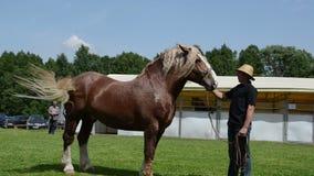 Το άτομο παρουσιάζει βαρύ άλογο φιλμ μικρού μήκους