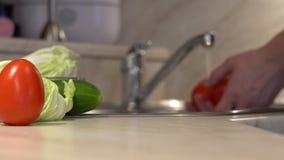 Το άτομο πλένει τα φύλλα ντοματών πρίν μαγειρεύει τα vegan πιάτα απόθεμα βίντεο