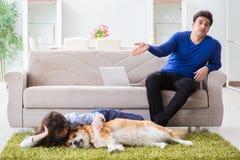 Το άτομο που έχει την αλλεργία από τη γούνα σκυλιών Στοκ Εικόνες