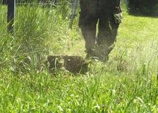 Το άτομο που κόβει τον πράσινο άγριο τομέα χλόης που χρησιμοποιεί trimmer χορτοταπήτων σειράς εργαλείων θεριστών ή δύναμης κοπτών Στοκ Φωτογραφία