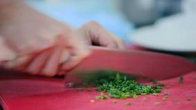 Το άτομο που κόβει το πράσινο κρεμμύδι στον πίνακα απόθεμα βίντεο