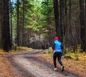 Το άτομο που τρέχει στο δάσος το αθλητικό άτομο που τρέχει σε ένα δασικό ίχνος Στοκ εικόνες με δικαίωμα ελεύθερης χρήσης