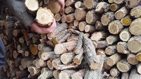 Το άτομο προετοιμάζει το σωρό καυσόξυλου σωρός χειμώνα και υποβάθρου φιλμ μικρού μήκους