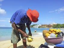 Το άτομο πωλεί τον ανανά στην παραλία στοκ εικόνα