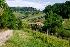 Το άτομο σε ένα άλογο οδηγά μεταξύ του αμπελώνα με το χωριό d'Alba Monforte Διάβαση από Barolo στοκ φωτογραφία με δικαίωμα ελεύθερης χρήσης