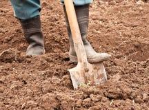 Το άτομο σκάβει ένα φτυάρι Στοκ Φωτογραφία