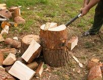 Το άτομο τεμαχίζει το ξύλο με το τσεκούρι Στοκ Εικόνα