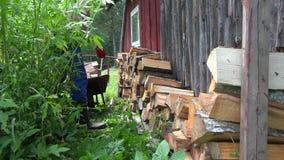 Το άτομο φέρνει με wheelbarrow το ξύλο και ξεφορτώνει στον εγχώριο τοίχο 4K φιλμ μικρού μήκους