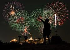 Το άτομο φαίνεται πυροτεχνήματα διακοπών στον ουρανό βραδιού στοκ εικόνες