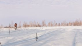 Το άτομο το χειμώνα ντύνει γρήγορα να οδηγήσει και να ελιχτεί στο μίνι όχημα για το χιόνι βαθιά snowdrifts στον τομέα απόθεμα βίντεο