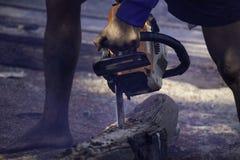 Το άτομο χρησιμοποιεί τη φορητή ξυλεία περικοπών αλυσιδοπριόνων μηχανών βενζίνης στα κομμάτια στοκ εικόνα με δικαίωμα ελεύθερης χρήσης