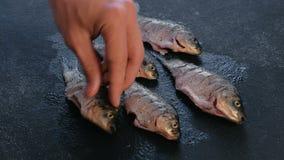 Το άτομο ψεκάζει το αλάτι και το πιπέρι στον πρόσφατα βουρτσισμένο κυπρίνο σε έναν μαύρο πίνακα μαγειρεύοντας ψάρια Κινηματογράφη απόθεμα βίντεο