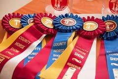 Το άλογο παρουσιάζει κορδέλλες βραβείων Στοκ Εικόνα