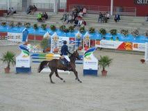 Το άλογο της Νορμανδίας παρουσιάζει Στοκ εικόνα με δικαίωμα ελεύθερης χρήσης