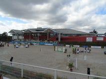 Το άλογο της Νορμανδίας παρουσιάζει Στοκ Φωτογραφία