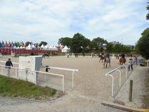 Το άλογο της Νορμανδίας παρουσιάζει Στοκ φωτογραφία με δικαίωμα ελεύθερης χρήσης