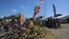 Το άλογο του Μάλμοε παρουσιάζει Στοκ εικόνες με δικαίωμα ελεύθερης χρήσης