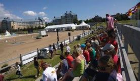 Το άλογο του Μάλμοε παρουσιάζει Στοκ φωτογραφία με δικαίωμα ελεύθερης χρήσης