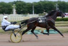 Το άλογο trotter αναπαράγει στην αφηρημένη θαμπάδα κινήσεων Στοκ Εικόνες