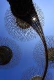 Το άλσος Supertrees στους κήπους από τον κόλπο στοκ φωτογραφία με δικαίωμα ελεύθερης χρήσης