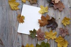Το έγγραφο για τα φύλλα επιστολών και χρώματος ενός σφενδάμνου είναι σε μια ξύλινη επιφάνεια στοκ φωτογραφία