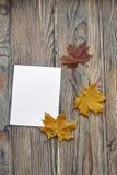 Το έγγραφο για τα φύλλα επιστολών και χρώματος ενός σφενδάμνου είναι σε μια ξύλινη επιφάνεια στοκ εικόνα
