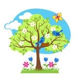 Το δέντρο άνοιξη, πουλιά χτίζει τις φωλιές, εποχιακά σημάδια της άνοιξη Στοκ Εικόνες