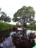 Το δέντρο κρεμά πέρα από την κάμψη του ποταμού Στοκ εικόνες με δικαίωμα ελεύθερης χρήσης