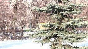Το δέντρο σταθμεύει την άνοιξη φιλμ μικρού μήκους