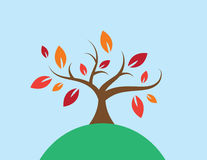 Το δέντρο χρωμάτισε τα φύλλα Στοκ Φωτογραφία