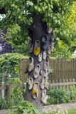 Το δέντρο clogs Στοκ Εικόνες