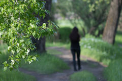 Το ίχνος, θολωμένη σκιαγραφία πηγαίνει μακριά, πράσινα φύλλα Στοκ εικόνα με δικαίωμα ελεύθερης χρήσης