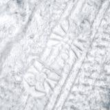 Το ίχνος και η ρόδα ακολουθούν στο χιόνι Στοκ εικόνες με δικαίωμα ελεύθερης χρήσης