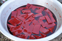Το αίμα αγελάδων επιπλέει πολύ κόκκινο τροφίμων Στοκ Φωτογραφίες