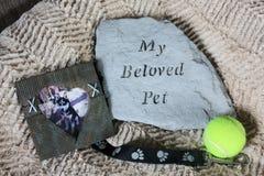 Το αγαπημένο μνημείο της Pet μου στο κρεβάτι σκυλιών στοκ φωτογραφίες