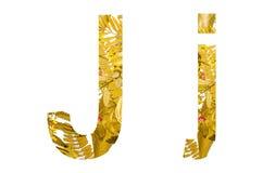 Το αγγλικό αλφάβητο έκανε από τα ξηρά φύλλα και την ξηρά χλόη στο άσπρο υπόβαθρο για απομονωμένος Στοκ Εικόνες