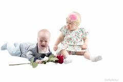 Το αγοράκι παρουσιάζει κόκκινο ανήλθε λουλούδι στο χαριτωμένο κορίτσι παιδιών που απομονώνεται στο άσπρο υπόβαθρο. Στοκ εικόνες με δικαίωμα ελεύθερης χρήσης