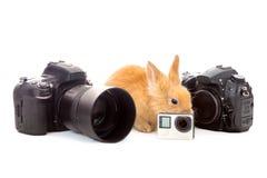 Το λαγουδάκι Πάσχας με τις συσκευές για παρουσιάζει στο άσπρο υπόβαθρο Στοκ Εικόνα