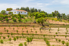 Το αγροτικά σπίτι και τα δέντρα στην κοιλάδα Seco, Σαντιάγο κάνουν Cacem Στοκ Φωτογραφίες