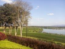 Το αγρόκτημά μας στοκ φωτογραφίες με δικαίωμα ελεύθερης χρήσης