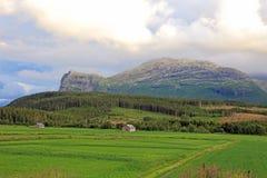 το αγρόκτημα στεγάζει τη &mu Στοκ Φωτογραφία