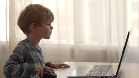 Το αγόρι κάθεται σε ένα lap-top ενάντια στο παράθυρο απόθεμα βίντεο
