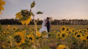Το αγόρι και το κορίτσι εραστών στέκονται το ένα απέναντι από το άλλο σε έναν όμορφο τομέα των ηλίανθων απόθεμα βίντεο