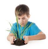 Το αγόρι κρατά τις διαφυγές χεριών Στοκ Εικόνα